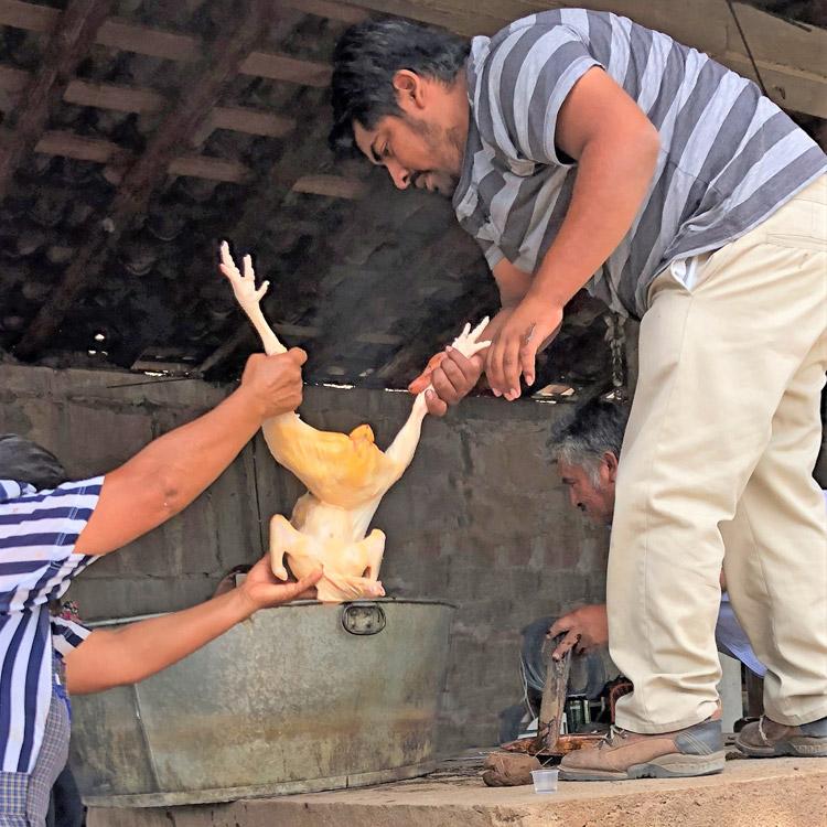 xicaru pechuga mole joare loading chicken to still